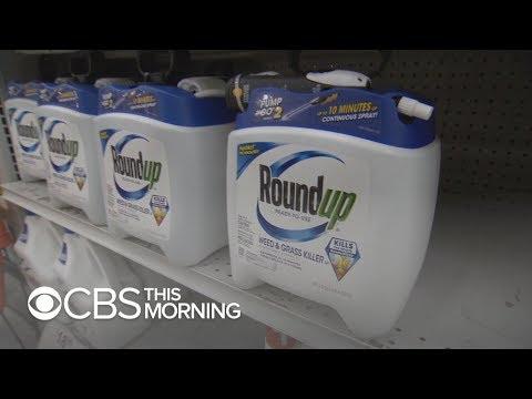 Roundup Video